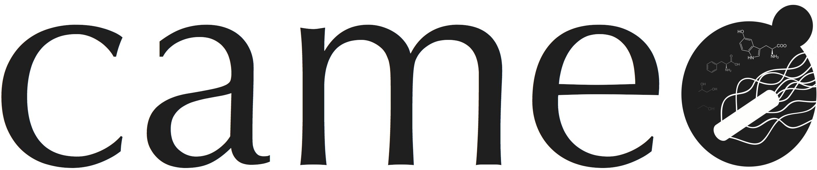 Analyzing models — cameo 0 11 15 documentation